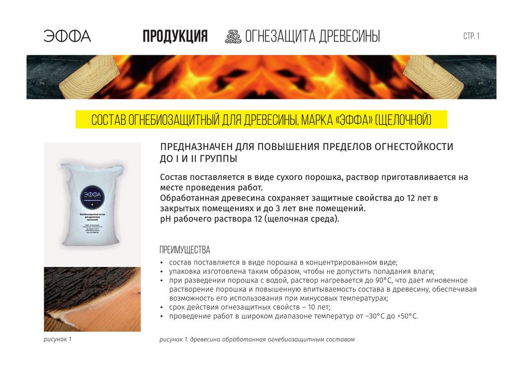 effa-brochure02